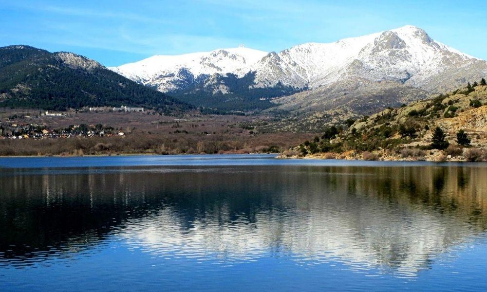 Control contra las plagas forestales en el Parque de Guadarrama